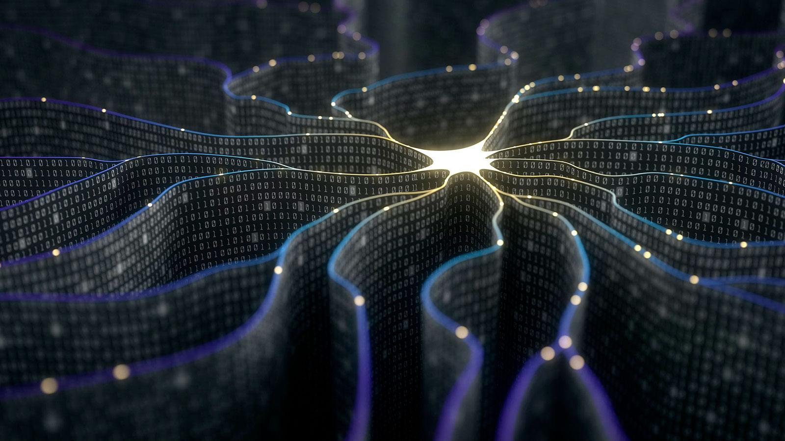 Afinal, os algoritmos são preconceituosos ou obedientes?